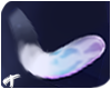 Luna | Tail 6