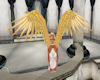 CNT GOLD WINGS