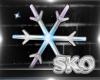 *SK*Snowflake