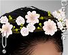 -V- Spring Crown