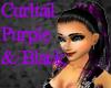 Curltail Purple/Black