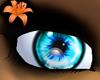 Prism Eyes Turquoise