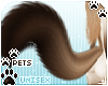 [Pets] Kimi | tail v3