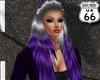 SD Cammy Grey Purple