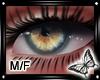!! Sierra Eyes M/F