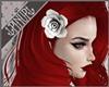 K| Pinup Rose White | L