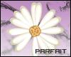 (*Par*) Vector Daisy