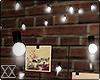 ☾ Hanging lights