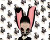 Pug ears C:
