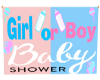 Gender Reveal BabyShower