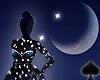 Cat~ Blue Moon