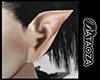 Vampire ears F