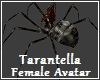 Tarantella Female Avatar
