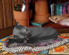 TF* Breathing Sleepy Cat