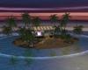 J* Night party island
