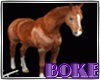 "♔""Bk HorseCaricia"
