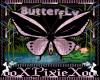 belly butterfly
