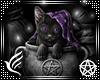 Wicca Kitty Frame v2