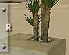 Contempo Yucca Pot