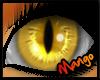 -DM- Calico Eyes