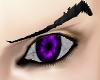 Possesion purple