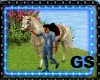 GS SHOW JUMPING HORSE