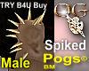 OG/SpikedPog Gold Male