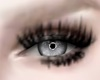Doll Lashes MH