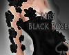 Cat~ Arm Black Roses
