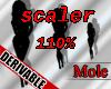 Scaler 110%