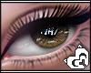 Mai ® S'EyesUnisex(L)~8