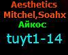 Aesthetics  Mitchel