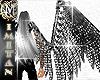 (MI) Acero Wings Male