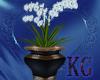 KG*Orchid Vase