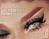 SO! Perfect. brows 05
