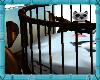 [DRC] Panda Penguin Crib