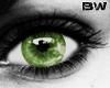 Green Unisex Eyes