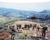 vietnam battle3 b/ground