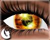 {M} Amber Eyes (F)
