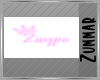 [Z] Zaypo Neon Sign