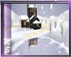 MS ICE SKATING SNOW LODG