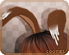 ✿Cini | Ears 1