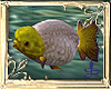 (ARC)KoiFish2
