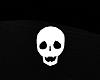 chalky skull accessor