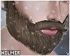 Hilmir | Viking Beard