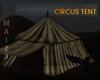 FORGOTTEN CIRCUS .