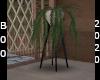 secert Garden plat