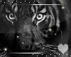 Black Tiger -Animated