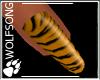 WS ~ Copper Tiger Nails