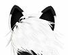 Meowly Ears /lakritzchen